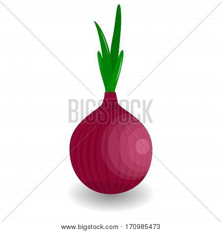 Whole bulb red onion with fresh green sprout isolated on white background. Vector illustration. Onion icon in flat style. Isolated object. Onion logo. Vegetable from the garden. Organic food. Red Onion vector illustration. Salad ingredient. Healthy vegeta