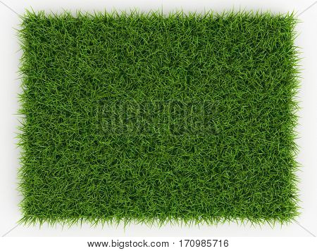 Top view of Fresh Spring Green Grass - natural background - 3d render