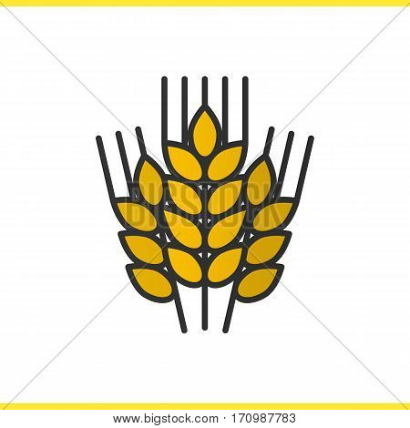Wheat ears color icon. Barley. Spikes of rye. Isolated vector illustration