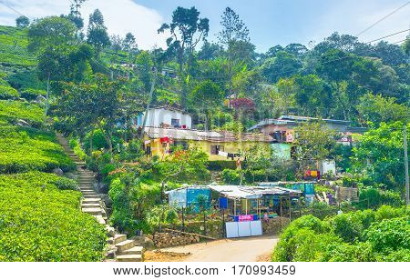 HAPUTALE SRI LANKA - NOVEMBER 30 2016: The residential houses in small settlement on the edge of town on November 30 in Haputale Sri Lanka