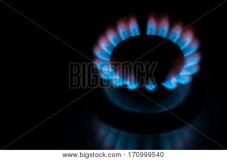 Flame from a gas stove, gas hob, cooker, energy concept