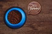 Bowl of dry kibble dog food. Mmm yummy speech bubble. Healthy pets feed. Blue plate on wooden rustic background. poster