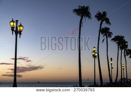 Silhouette Of Tall Palm Trees And Street Lamps On A Caribbean Beach At Dusk