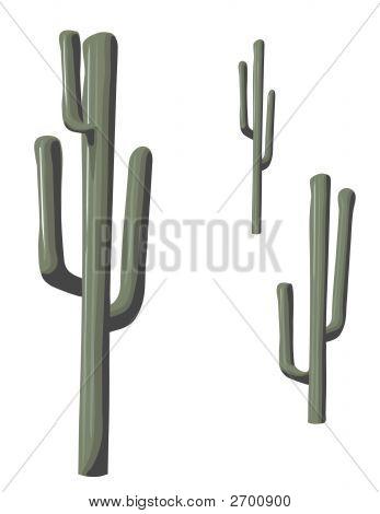 Isolated Saguaro Cactus.Eps