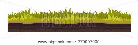 Texture Of Soil, With Grass, Lawn, Vegetation.