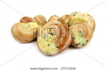 Snails escargot prepared as food