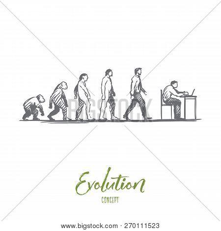 Evolution, Businessman, Programmer, Primitive Concept. Hand Drawn Figures Of Primates And Humans, Ev