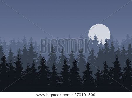 Realistic Illustration Of A Winter Coniferous Spruce Or Fir Forest Under A Gray Night Sky With A Moo