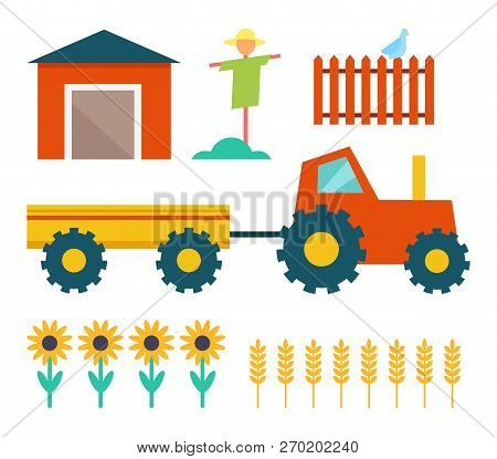 Farm Tractor With Trailer And Building Shed. Scarecrow And Fence With Bird, Sunflowers Plant And Whe