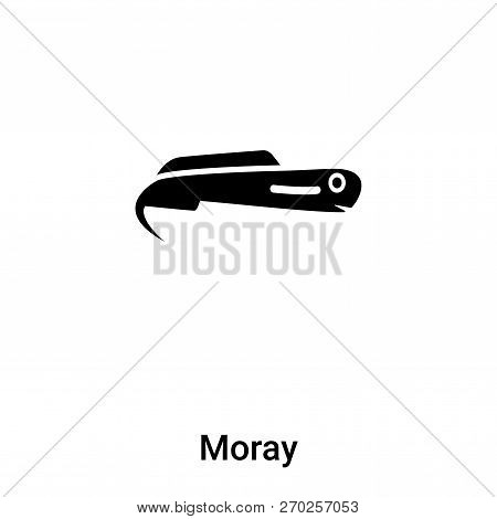 Moray Icon Vector Isolated On White Background, Logo Concept Of