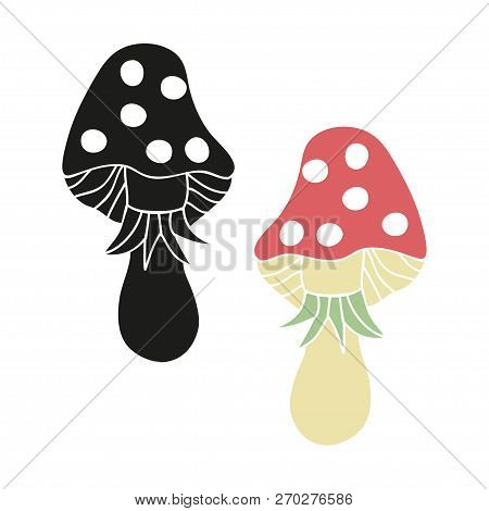 Agaric, Hallucinogenic Mushroom. Color And Black-and-white Image On A White Background.