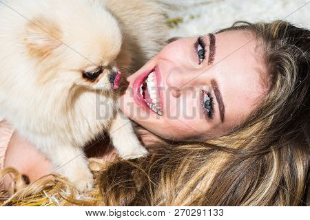 Crazy Girl With Little Dog Looking At The Camera. Gashion Puppy. Cute Dog With Funny Girl. Funny Pup