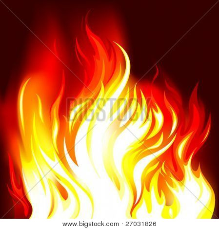 fire vector illustration