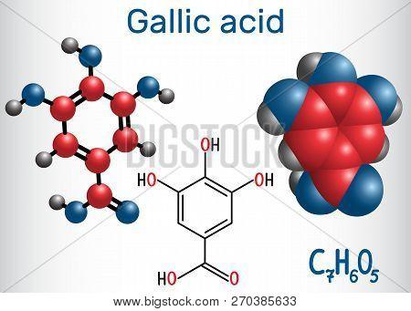 Gallic Acid (trihydroxybenzoic Acid) Molecule, Is Phenolic Acid, Found In Gallnuts, Sumac, Witch Haz