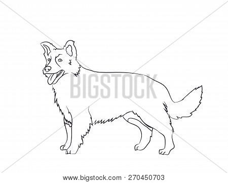 Dog Stands, Lines, Vector