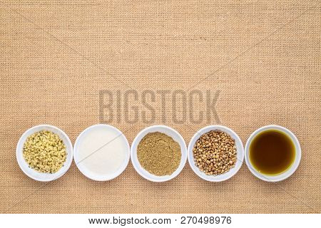 collection of hemp seed products: hearts, protein powder, milk and oil in small white bowls agaionst burlap canvas with a copy space