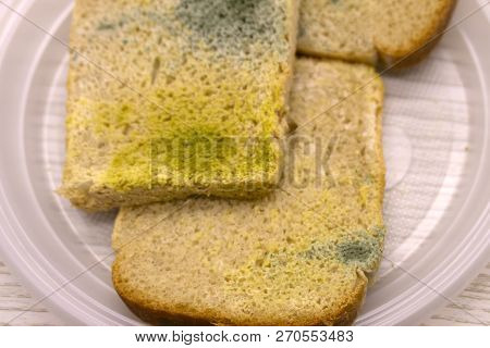 Mold On Slices Of White Bread. Mould On Food. Bread With Mildew. Rotten Food, Bread. Macro Perspecti