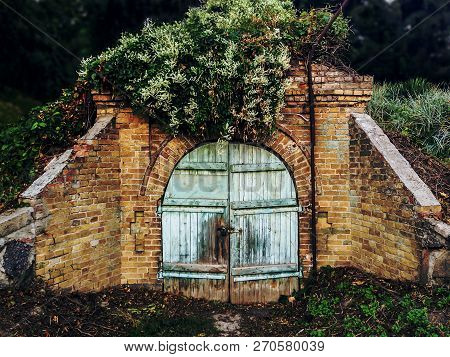 Ruins Of Old Cellar In Green Forest. Crawl Space With Lock On Shabby Blue Wooden Door. Concept - Ent