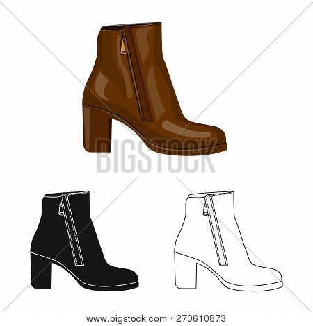 Vector Illustration Of Footwear And Woman Icon. Collection Of Footwear And Foot Stock Vector Illustr