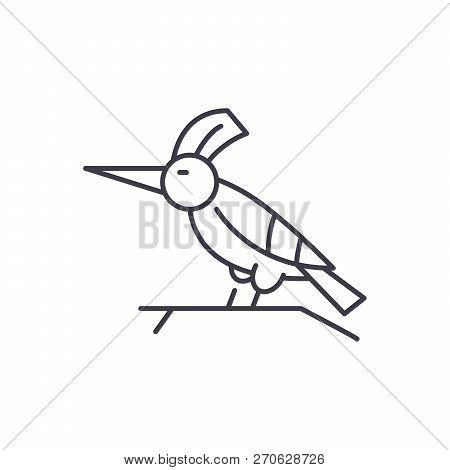 Woodpecker Line Icon Concept. Woodpecker Vector Linear Illustration, Symbol, Sign