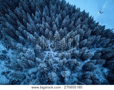 Aerial View From Above Of Winter Forest Covered With Snow. Fir Tree Forest Top View. Lonely Hermit H