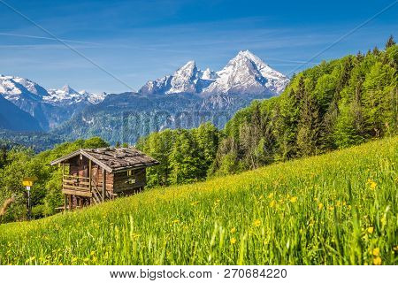 Panoramic View Of Idyllic Mountain Landscape In The Alps With Fresh Green Mountain Pastures, Flowers
