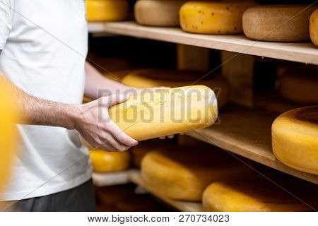 Worker Taking Cheese Wheel At The Storage During The Cheese Aging Process. Close-up View With No Fac