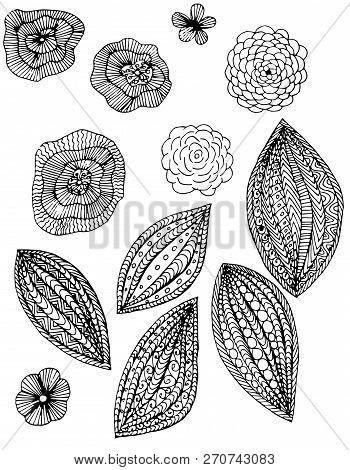 Monochrome Floral Doodle Set, Thin Black Line On White Hand Drawn Design Element Stock Vector Illust