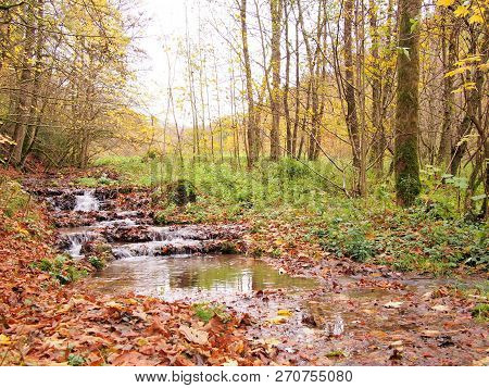 Small Creek In Autumn Near Thuisbrunn In The Franconian Switzerland East Of Nuremberg