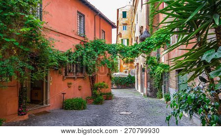 Cozy Street With Plants In Trastevere, Rome, Europe.