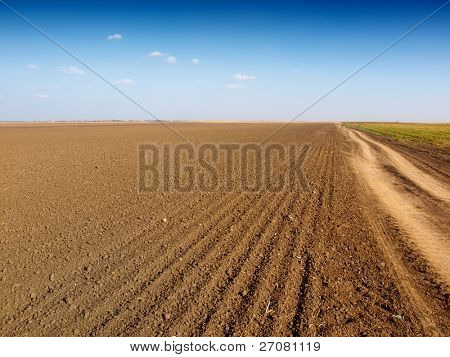 plowed field and dirt road