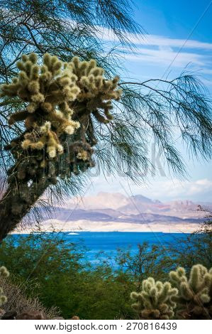 Scenes At Lake Mead Nevada Arizona Stateline