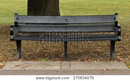 Black Park Bench In Front Of Tree In Autumn