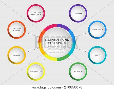 Business vector slide template with circle diagram. Essential parts of business: consumer competitor staff strategy distribution finance marketing media operational process. Infographic round chart. poster