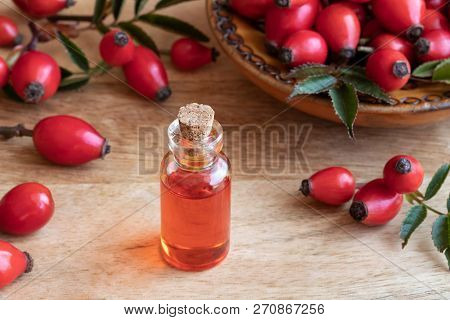 A Bottle Of Rosehip Seed Oil With Fresh Plant On A Table