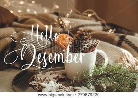 Hello December. Cup With Cones And Dry Orange With Sparkler, Fir Branch, Christmas Cookies, Cozy Kni