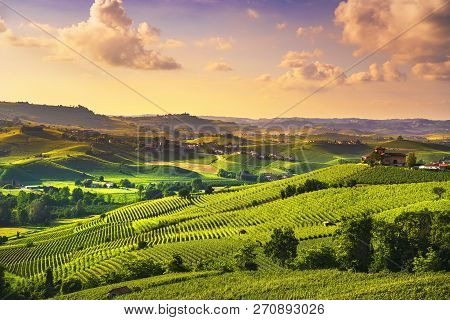 Langhe Vineyards Sunset Panorama, Near Barolo, Unesco Site, Piedmont, Northern Italy Europe.