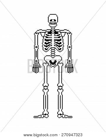 Skeleton Pixel Art. Skull And Bones Anatomy 8 Bit. Pixelate Pelvic Bone And Ribs. Spine And Vertebra