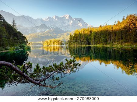 Famous lake Eibsee the best place on alps. Location resort Garmisch-Partenkirchen, Bavarian alp, Europe. Scenic image of most popular travel destination. Summer wallpaper. Discover the world's beauty.