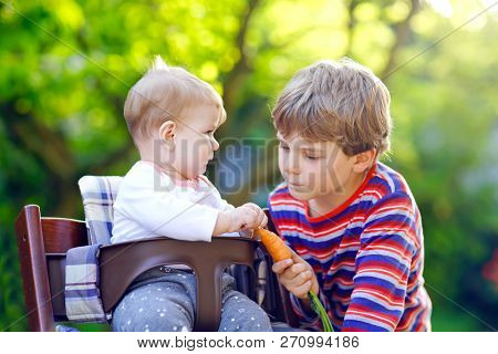 Little Blond Kid Boy Giving A Carrot To Baby Sister. Happy Siblings Eating Healthy Snack. Baby Girl