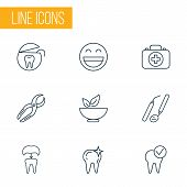 Dental icons line style set with healthy food, clean tooth, dental nippers and other dental rope elements. Isolated vector illustration dental icons. poster