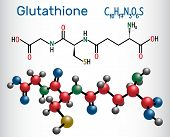 Glutathione (GSH) molecule, is an important antioxidant in plants, animals and some bacteria. Structural chemical formula and molecule model. Vector illustration poster
