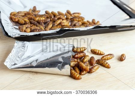 Silkworm Pupae Insects For Eating As Ready Meal Food. Chrysalis Silkworm Cooked Is Snack In Baking T