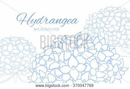 Background With Blue Outline Hydrangea, Clip Art