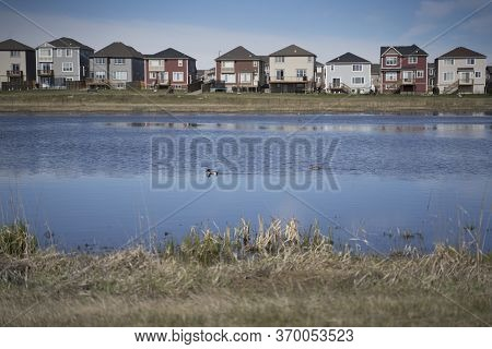 Calgary, Alberta, Canada, June 01 2020:  An subdivision developed up to designated habitat at the Ci