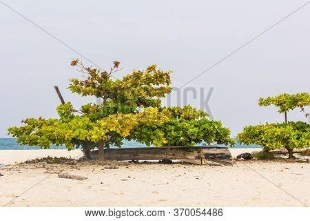 Summer House On The Beach In Tanzania