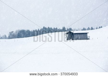 Agricultural Wooden Shack In Winter Landscape With Snow