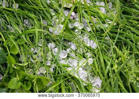 Hail On The Green Green Grass. A Frozen Drop Of Rain.