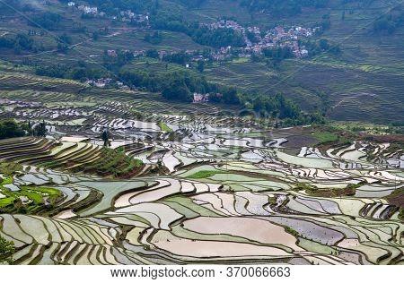 Terraced Rice Fields In Yuanyang County, Yunnan, China. Yuanyang County Lies At An Altitude Ranging