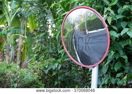 Large Road Mirror In A Rainforest. High Quality Photo